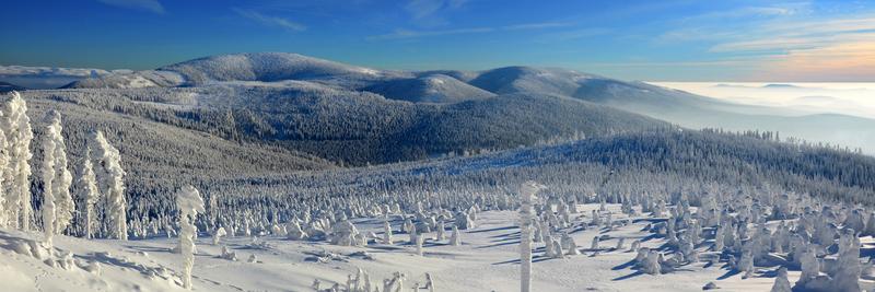 fot. Roman Kaczmarczyk.Śnieznik z Czarnej Góry.jpeg