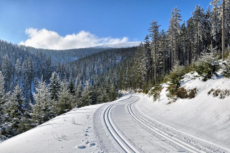 Droga nad Lejami w Masywie Śnieżnika. For. Szymon_Nitka - Kopia.jpeg