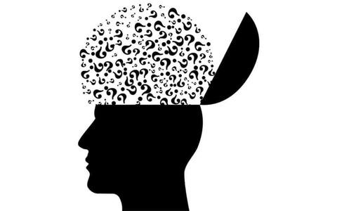 brain-question-marks-1024x640.jpeg