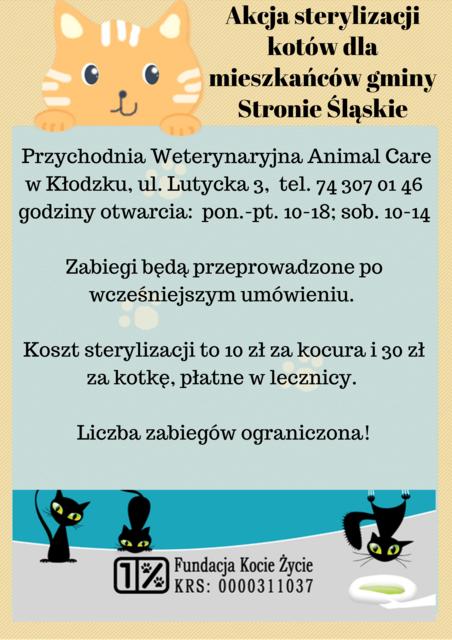 Akcja sterylizacji kotów dla mieszkańców gminy Stronie Śląskie.png