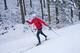 Galeria narciarstwo biegowe 2017