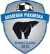 logo UKS AP.jpeg