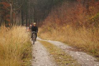Galeria Wycieczi rowerowe